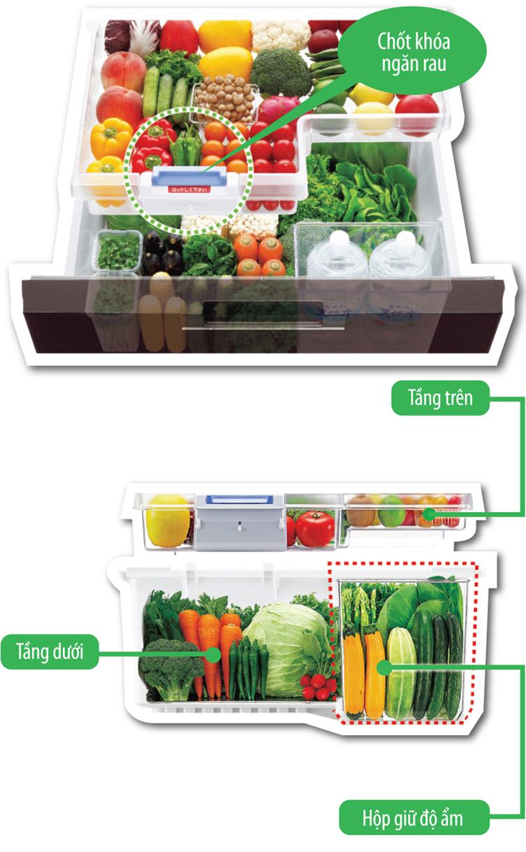 Tủ lạnh Sharp SJ-GF60A-T ngăn rau quả hai tầng